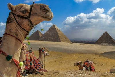 tour to giza pyramids- tour to sakkara